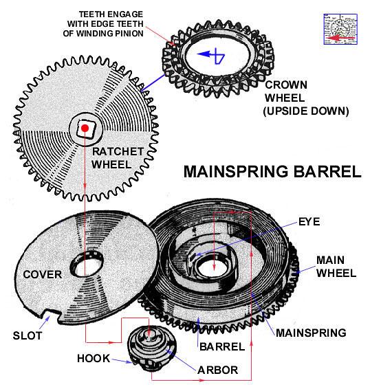 The mainspring, mainspring barrel, barrel arbor, ratchet and crown